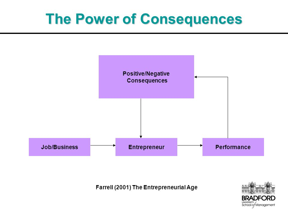 The Power of Consequences Farrell (2001) The Entrepreneurial Age