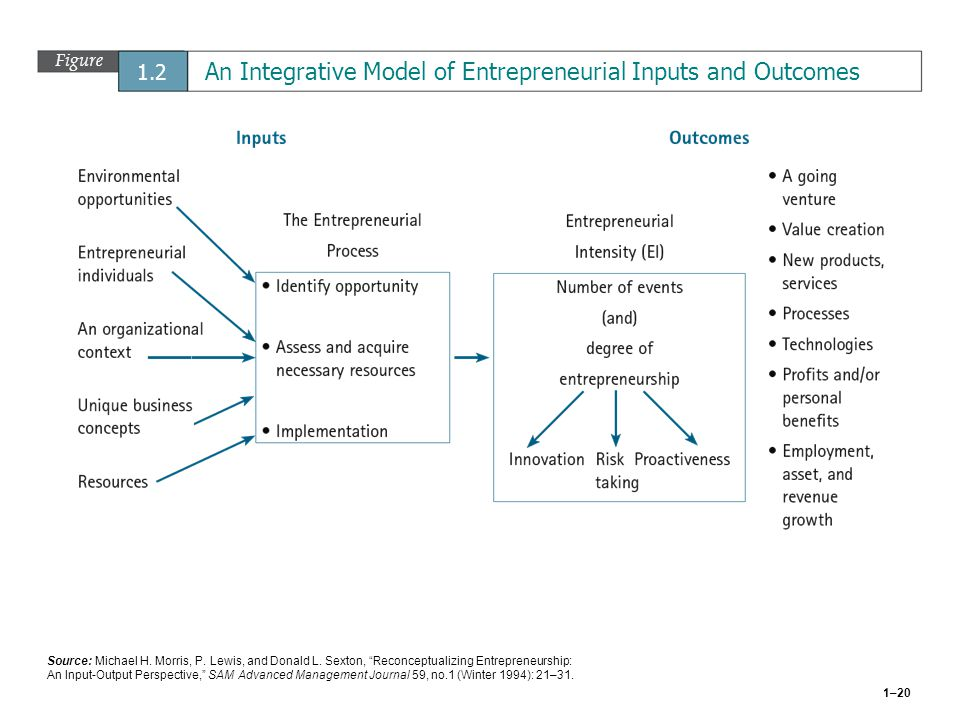 Figure 1.2 An Integrative Model of Entrepreneurial Inputs and Outcomes