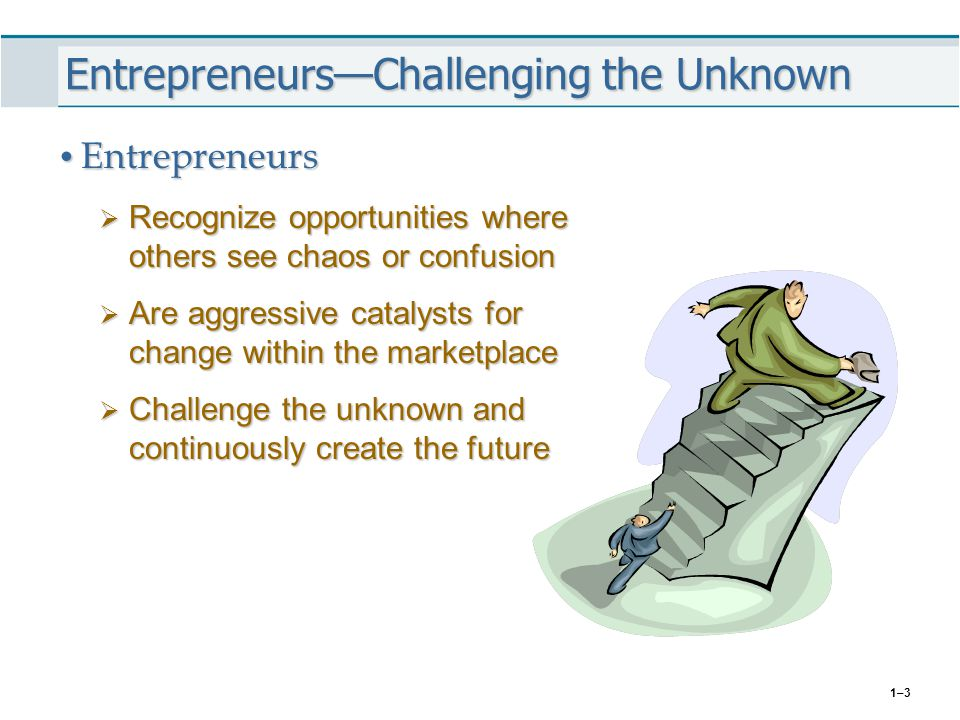 Entrepreneurs—Challenging the Unknown