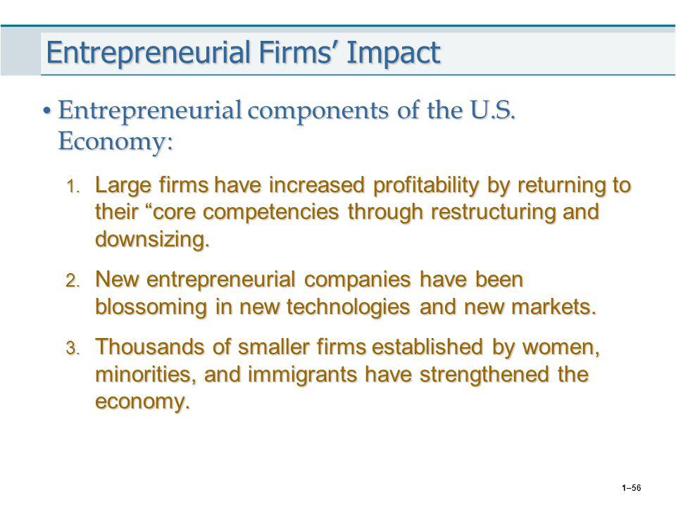 Entrepreneurial Firms' Impact