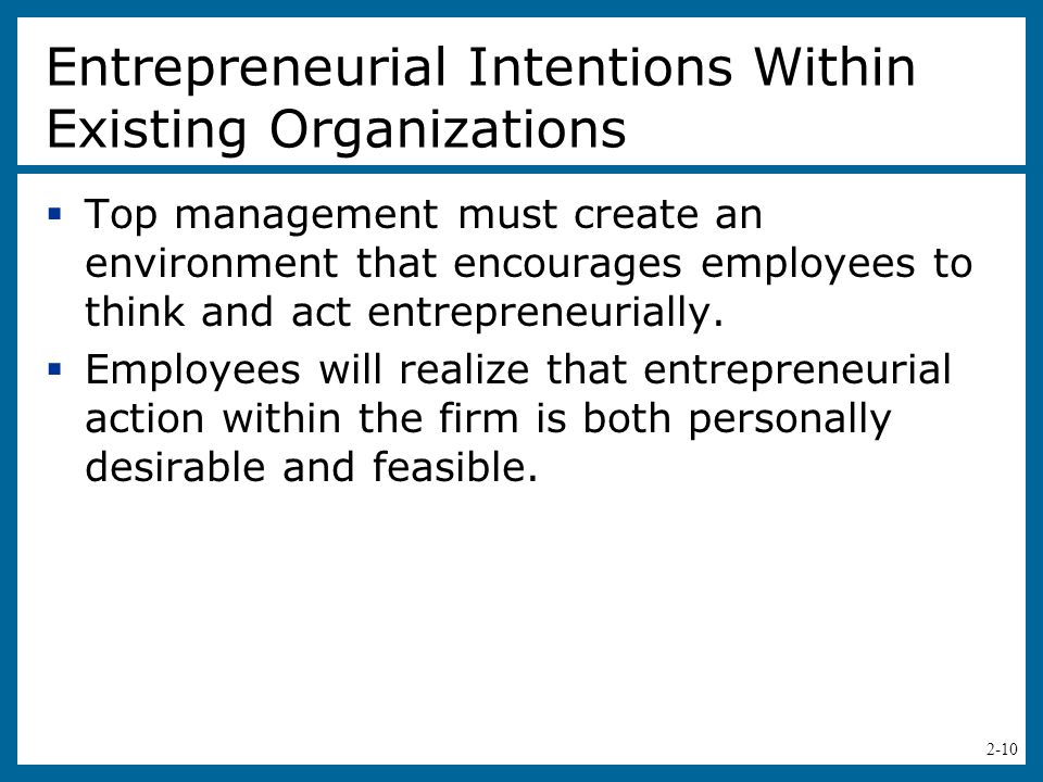 Entrepreneurial Intentions Within Existing Organizations