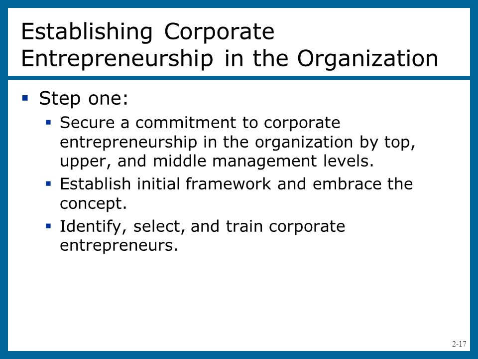 Establishing Corporate Entrepreneurship in the Organization