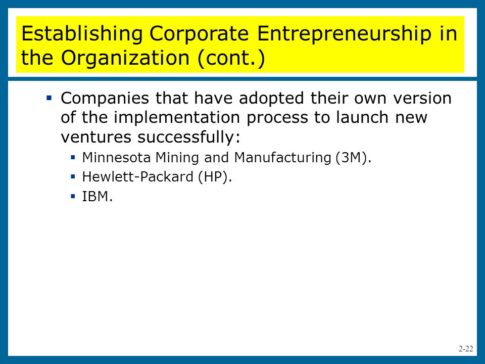 Establishing Corporate Entrepreneurship in the Organization (cont.)