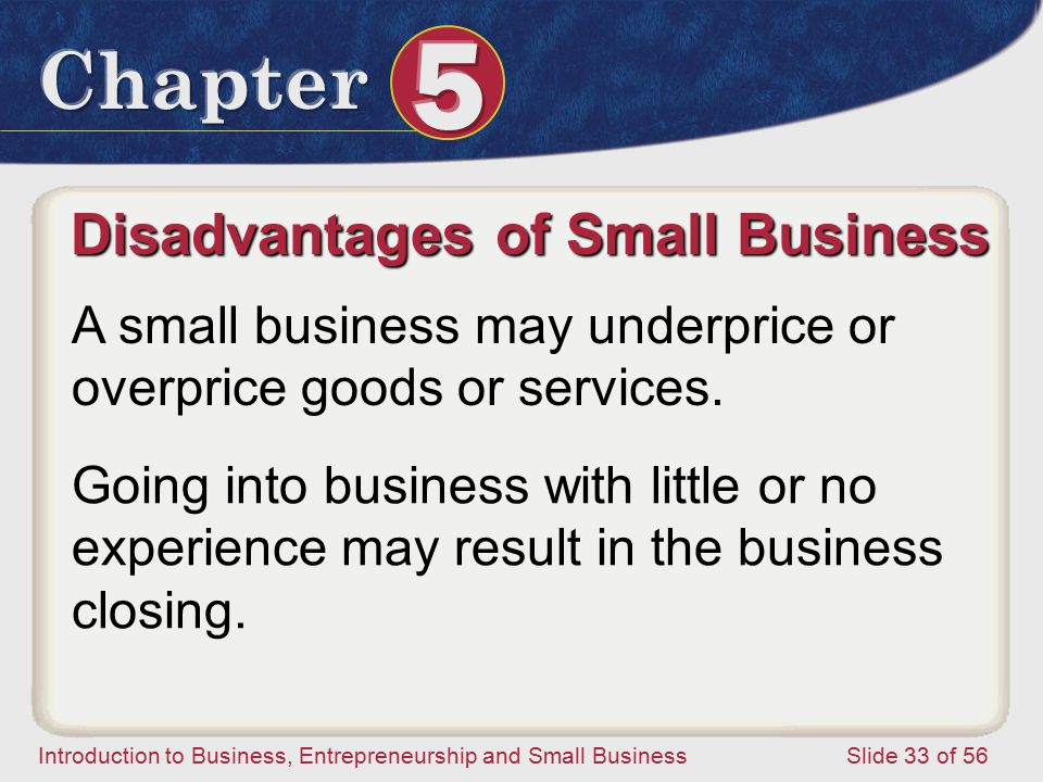 Disadvantages of Small Business