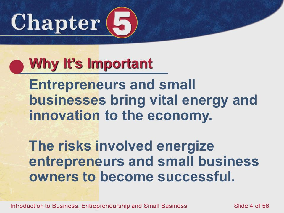 Why It's Important Entrepreneurs and small businesses bring vital energy and innovation to the economy.
