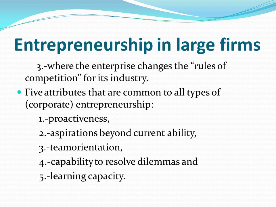 Entrepreneurship in large firms