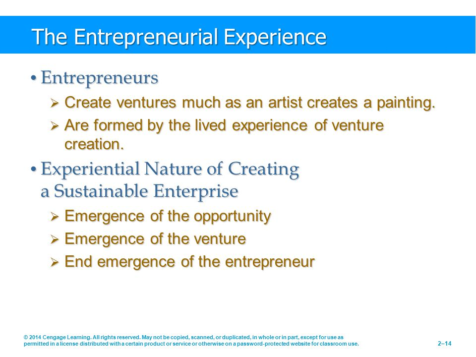 The Entrepreneurial Experience
