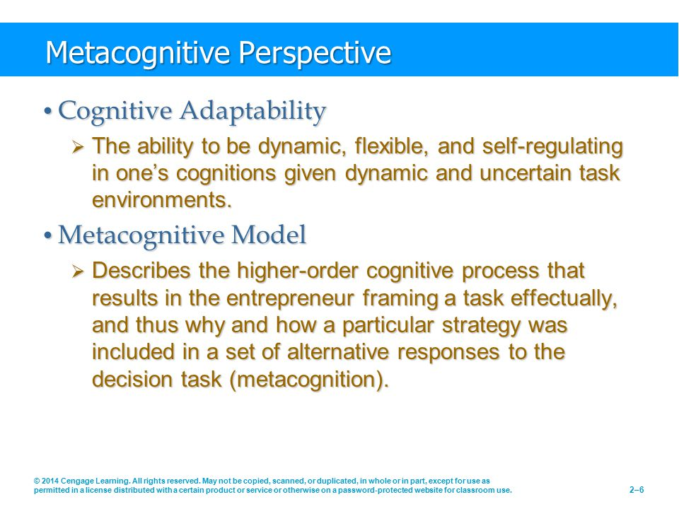 Metacognitive Perspective