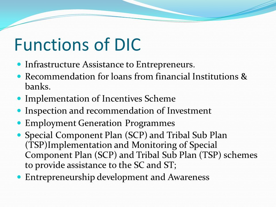 Functions of DIC Infrastructure Assistance to Entrepreneurs.