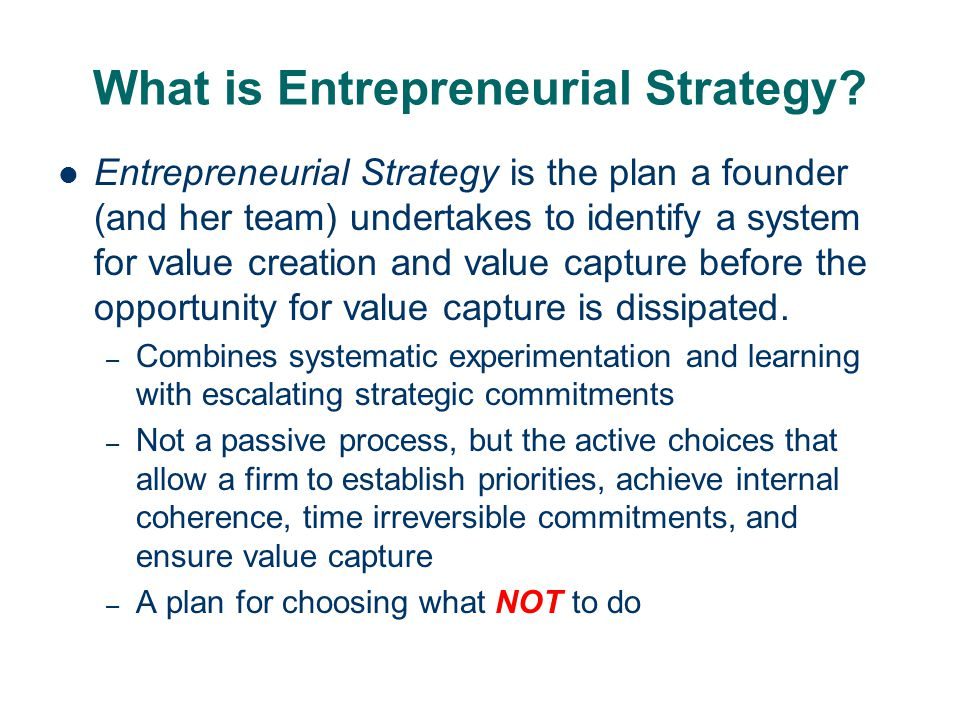 What is Entrepreneurial Strategy