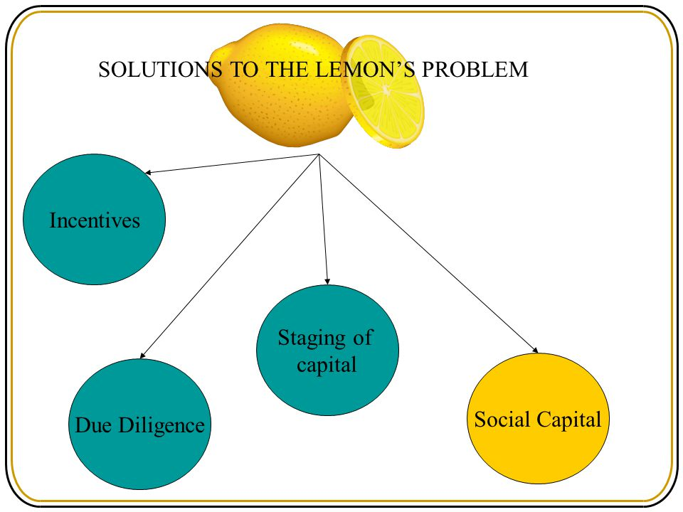 SOLUTIONS TO THE LEMON'S PROBLEM