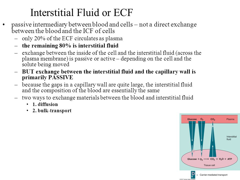 Interstitial Fluid or ECF