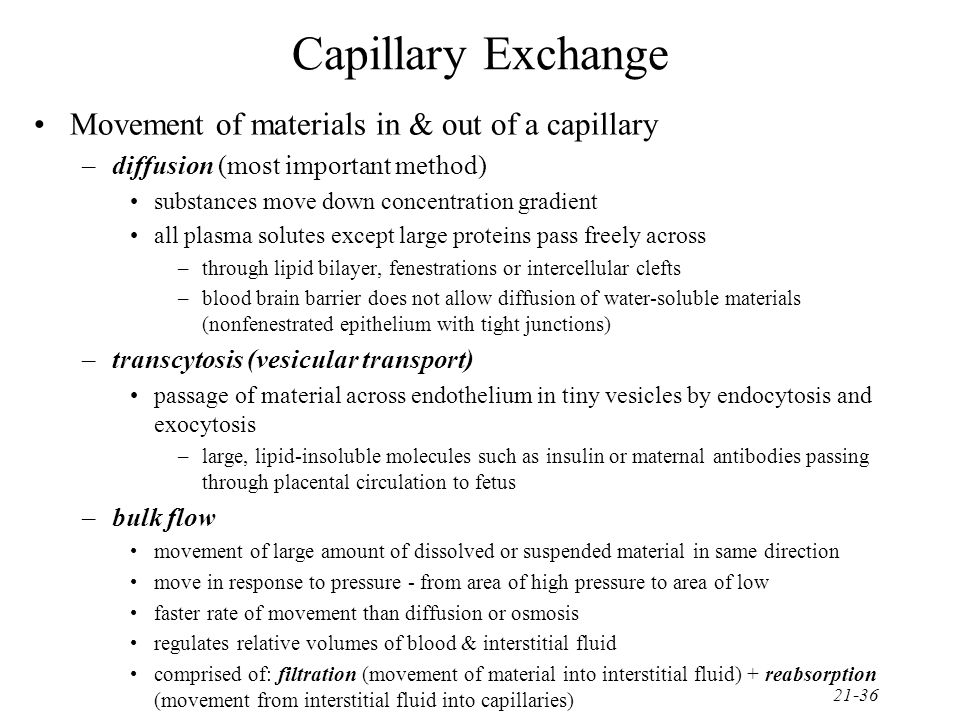 Capillary Exchange Movement of materials in & out of a capillary