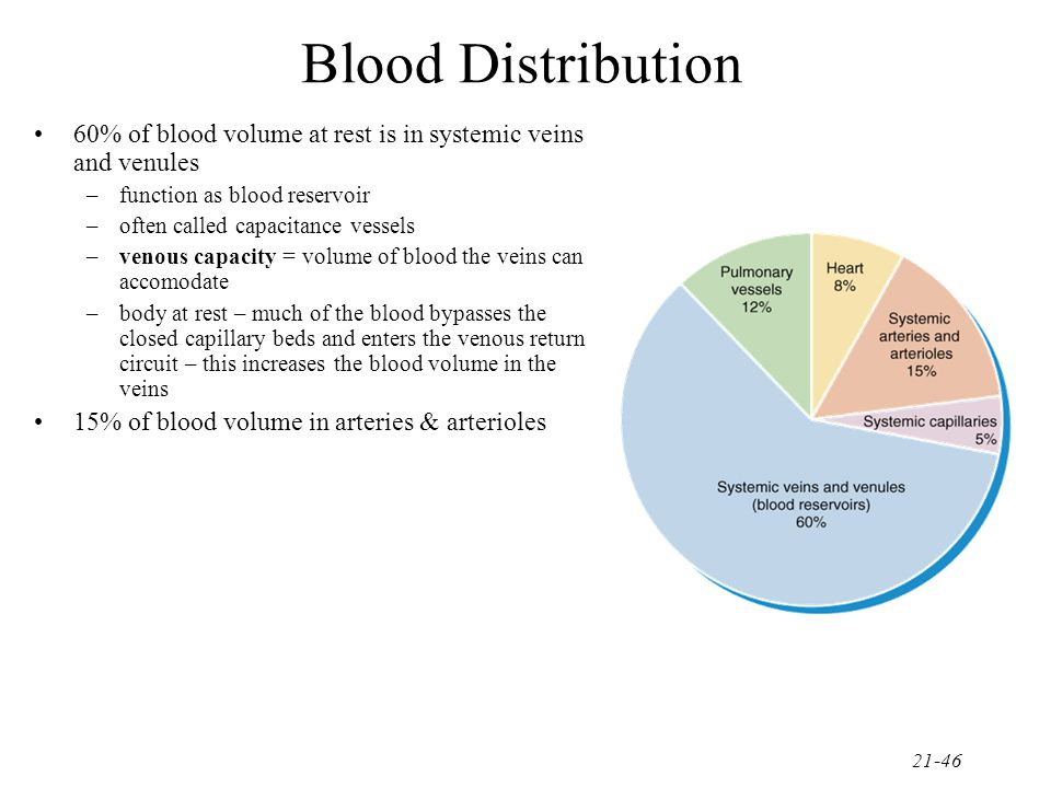 Blood Distribution 60% of blood volume at rest is in systemic veins and venules. function as blood reservoir.