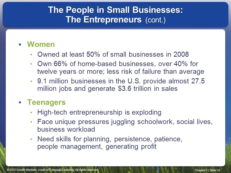 The People in Small Businesses: The Entrepreneurs (cont.)
