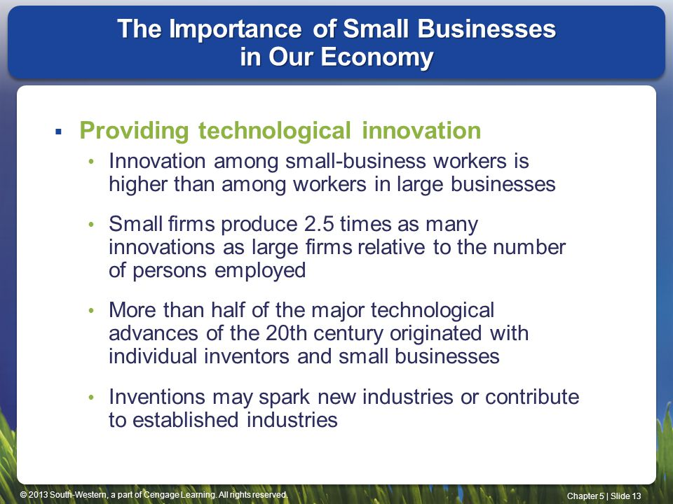 The Importance of Small Businesses in Our Economy