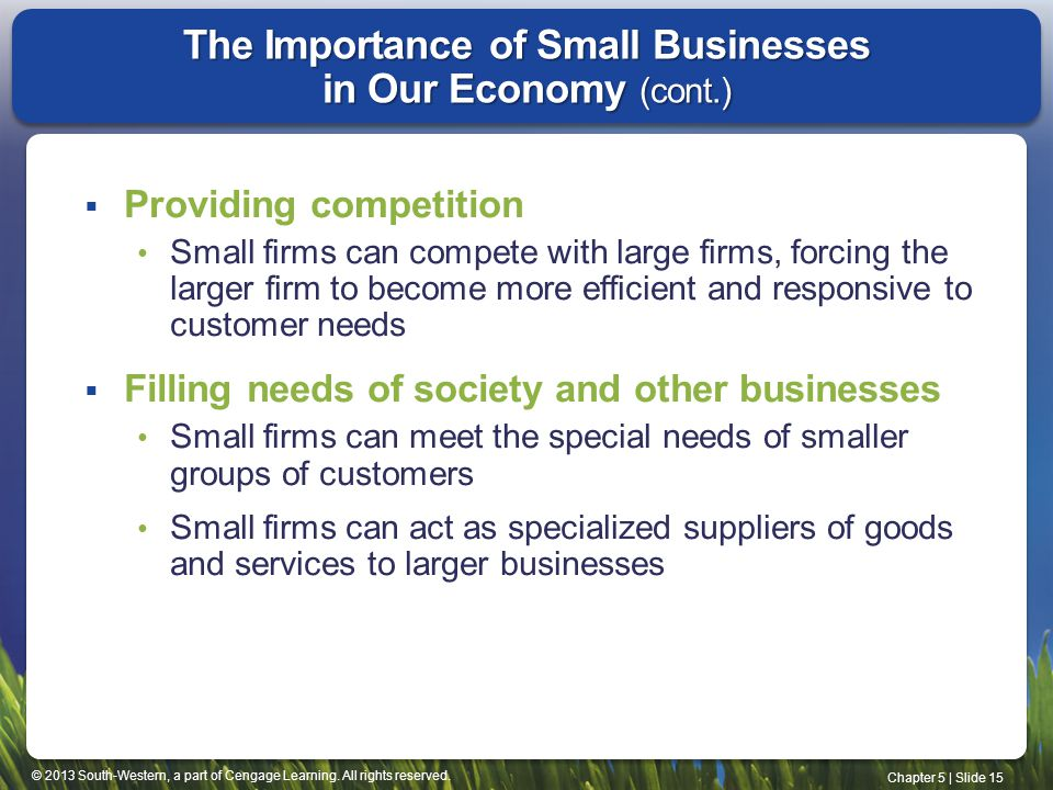 The Importance of Small Businesses in Our Economy (cont.)