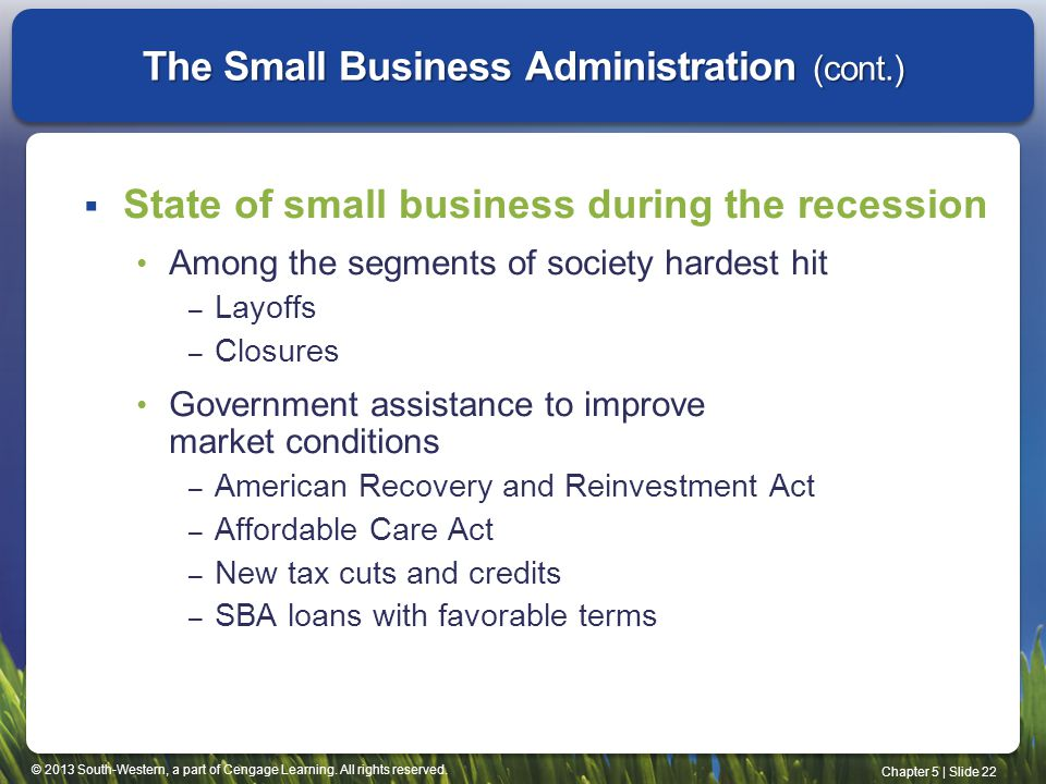 The Small Business Administration (cont.)