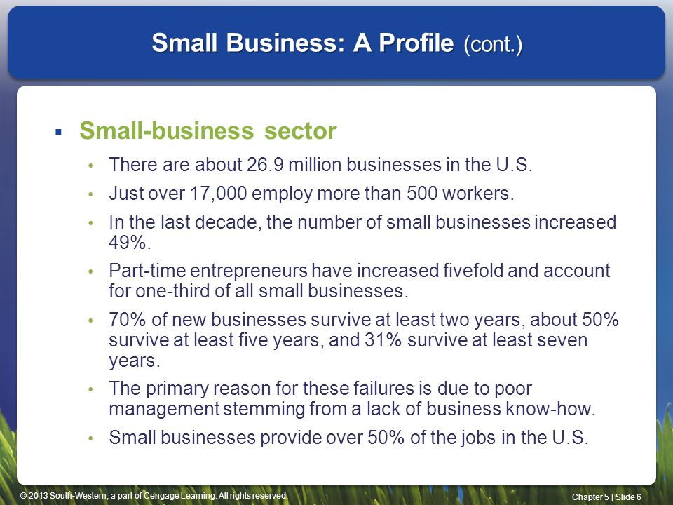Small Business: A Profile (cont.)