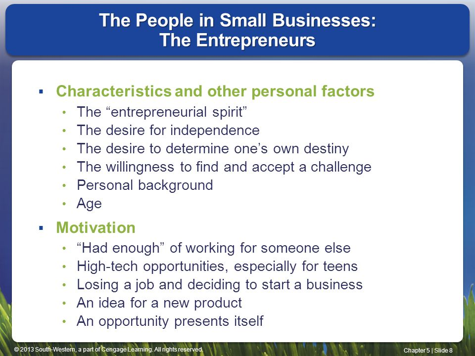 The People in Small Businesses: The Entrepreneurs