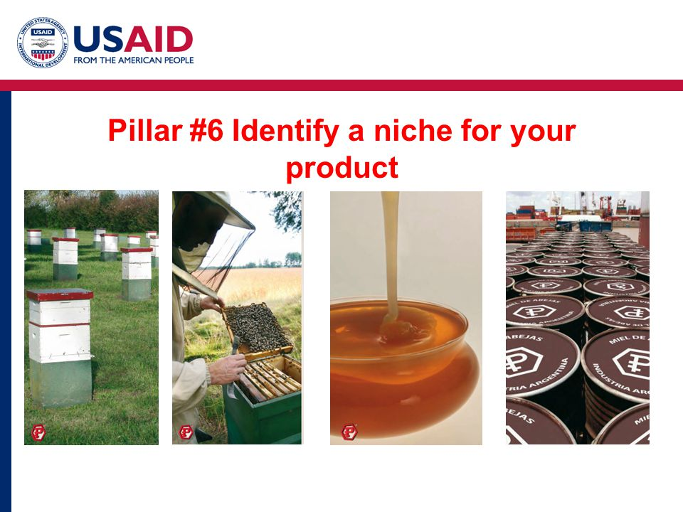 Pillar #6 Identify a niche for your product