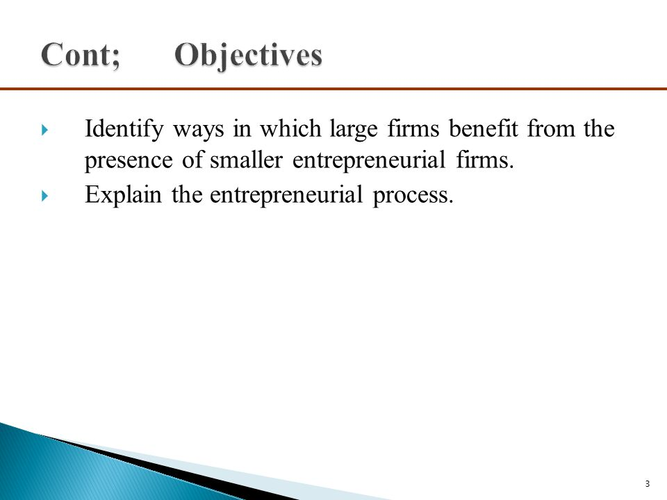 Cont; Objectives Identify ways in which large firms benefit from the presence of smaller entrepreneurial firms.