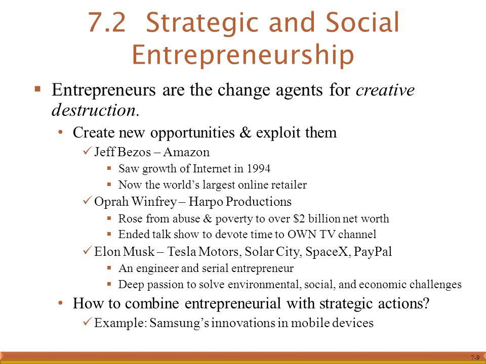 7.2 Strategic and Social Entrepreneurship