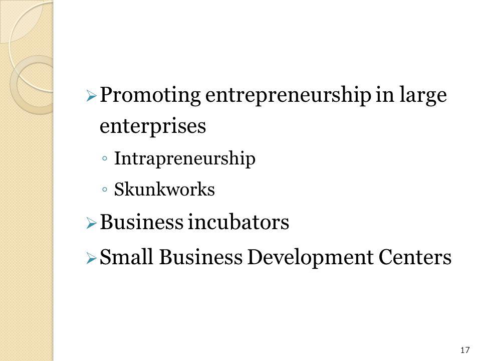 Promoting entrepreneurship in large enterprises