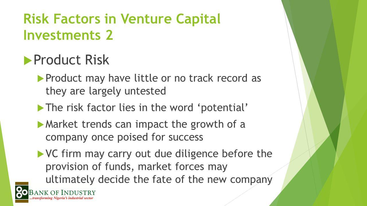 Risk Factors in Venture Capital Investments 2