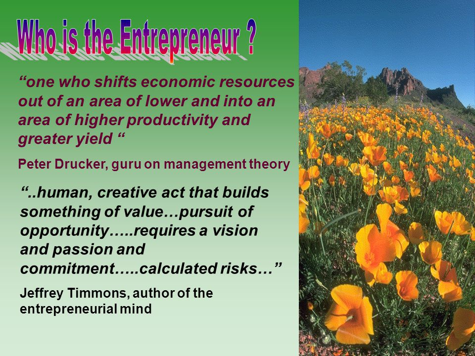 Who is the Entrepreneur