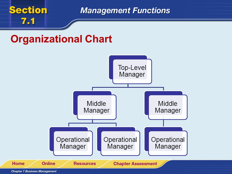 Organizational Chart Top-Level Manager Middle Manager