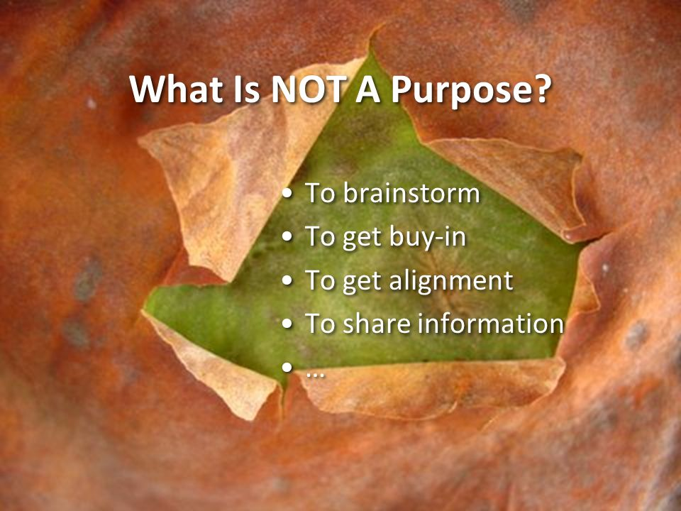 What Is NOT A Purpose To brainstorm To get buy-in To get alignment