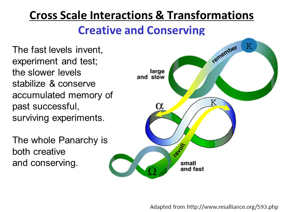 Cross Scale Interactions & Transformations Creative and Conserving