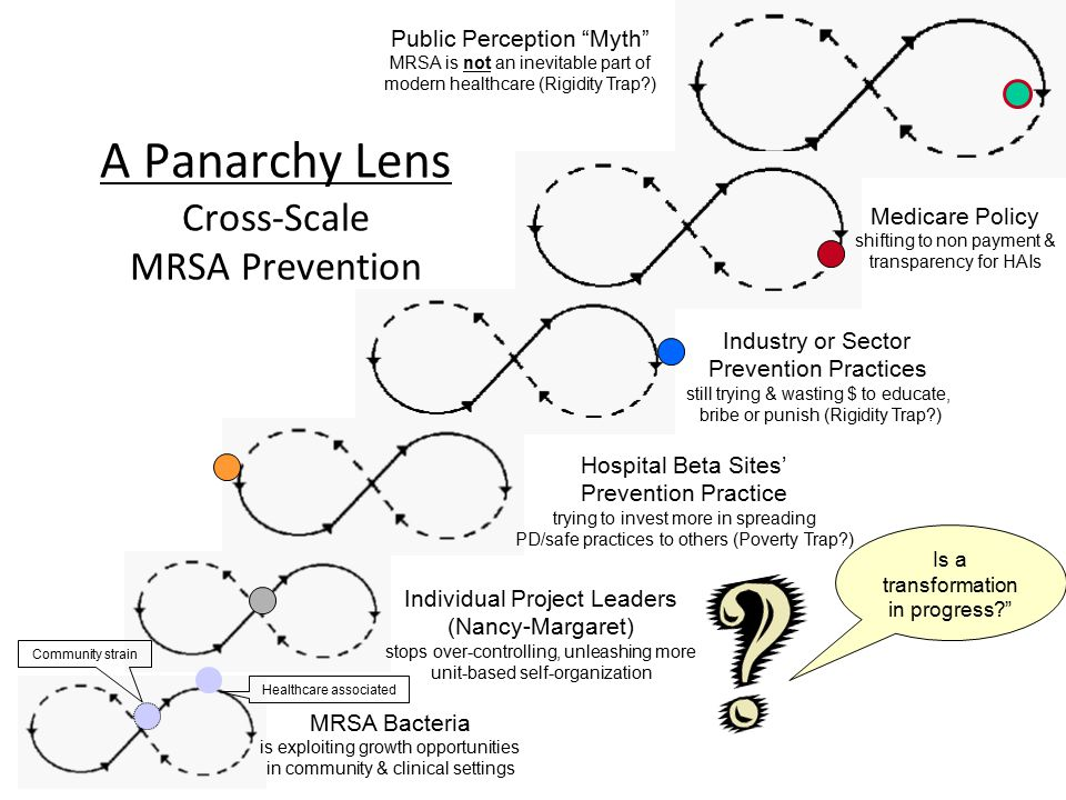 A Panarchy Lens Cross-Scale MRSA Prevention