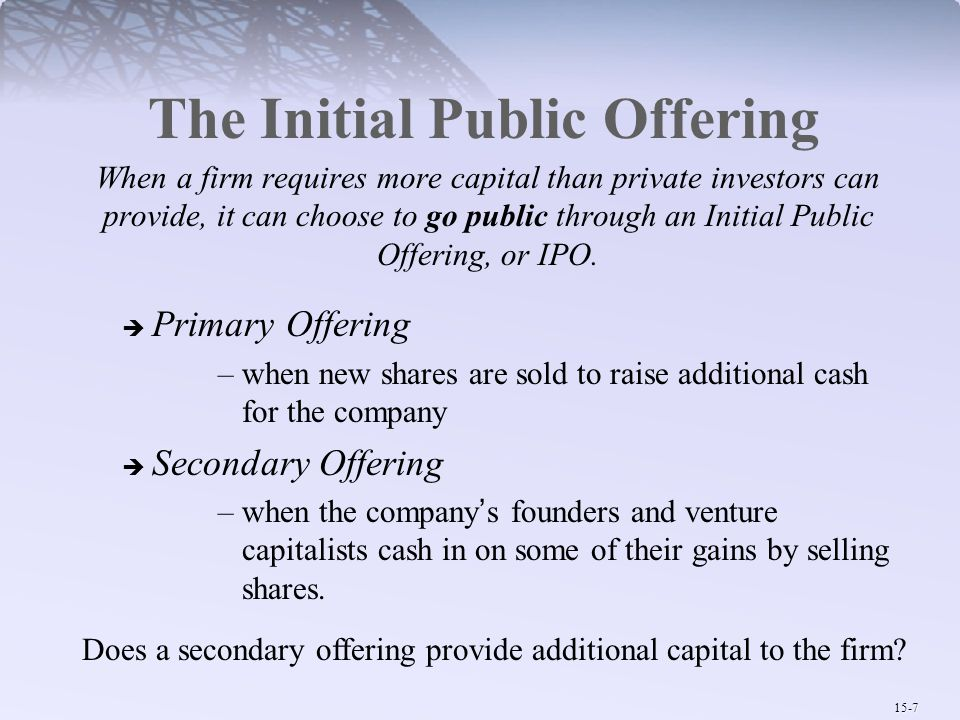The Initial Public Offering
