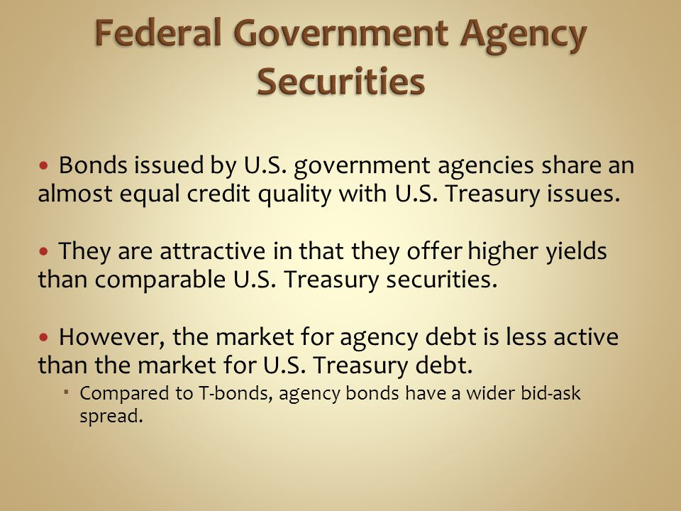 Federal Government Agency Securities