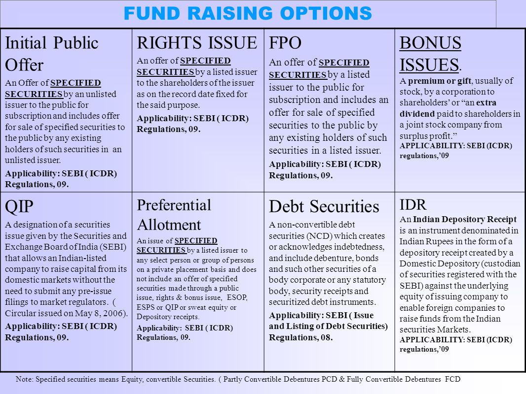 FUND RAISING OPTIONS Initial Public Offer RIGHTS ISSUE FPO