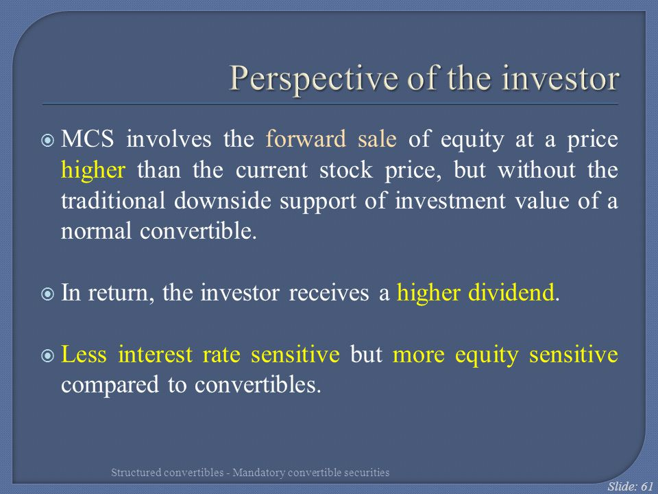 Perspective of the investor