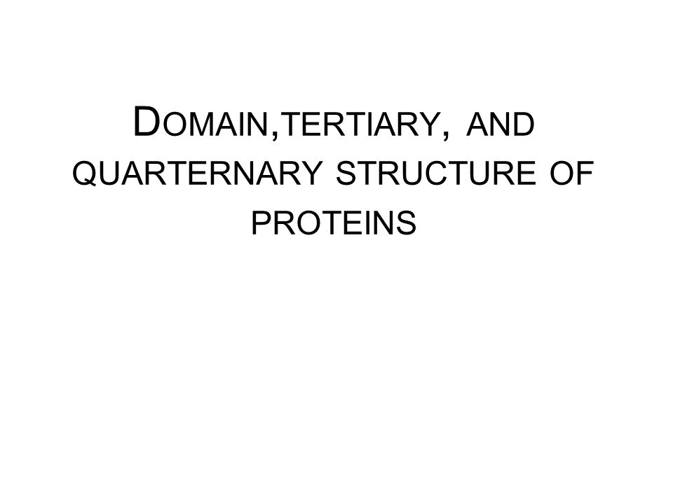 Domain,tertiary, and quarternary structure of proteins