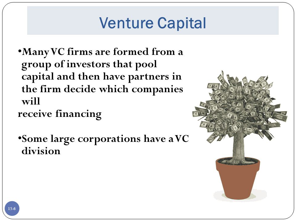 Venture Capital Many VC firms are formed from a group of investors that pool capital and then have partners in the firm decide which companies will.