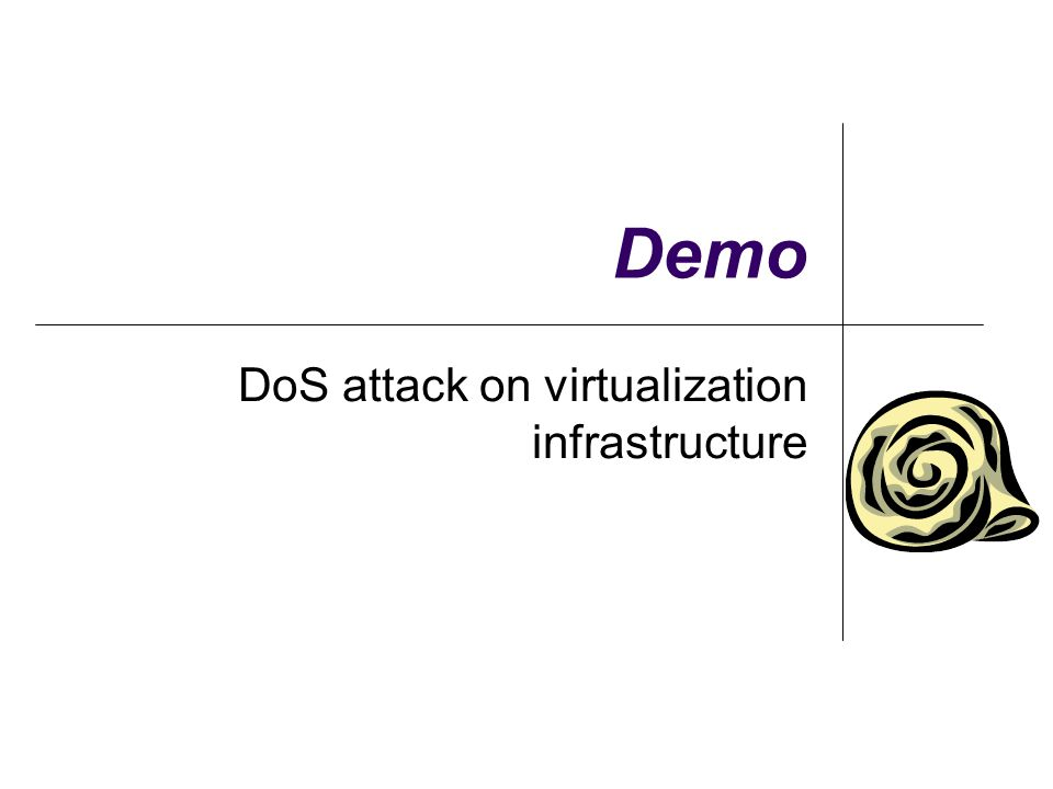 DoS attack on virtualization infrastructure