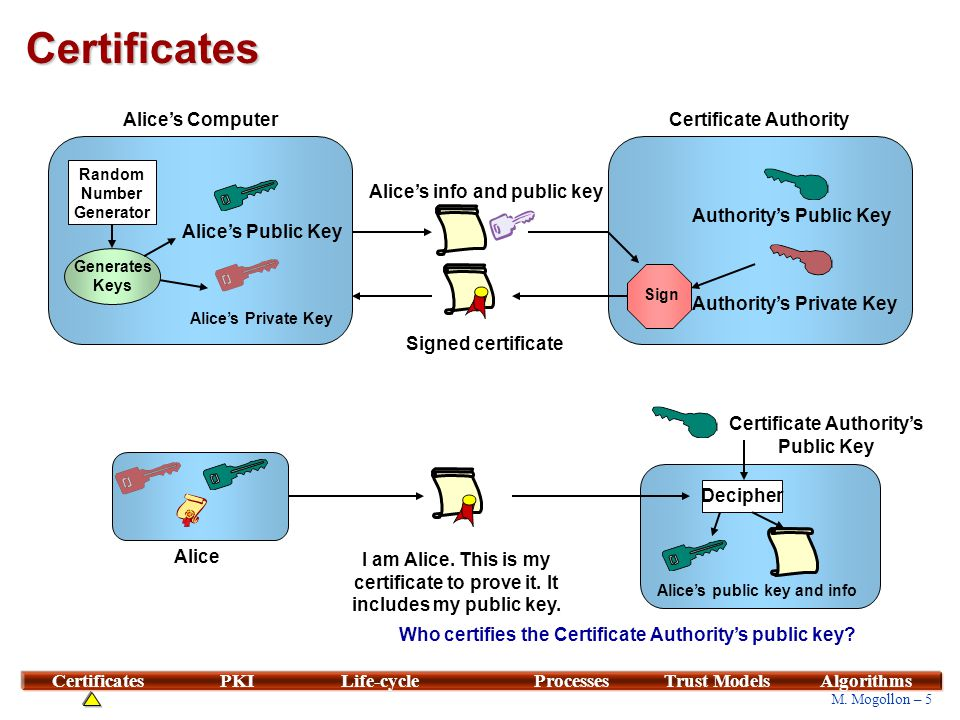 X.509 Certificate Certificate version Certificate serial number