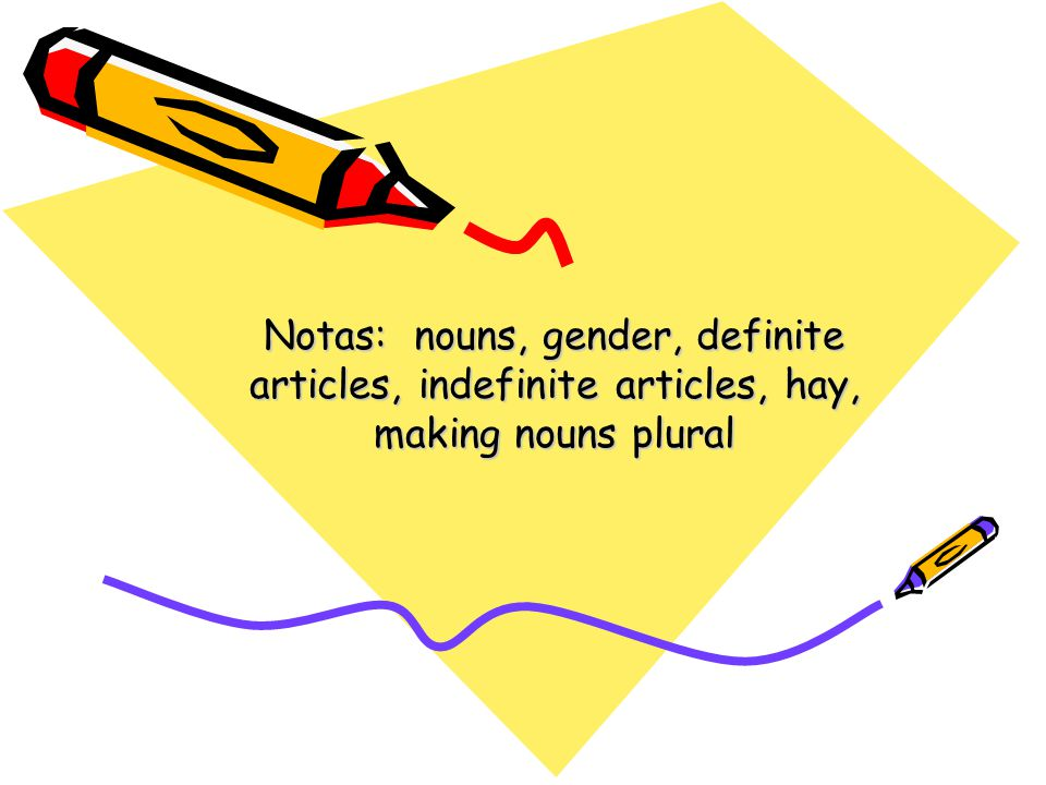 Notas: nouns, gender, definite articles, indefinite articles, hay, making nouns plural