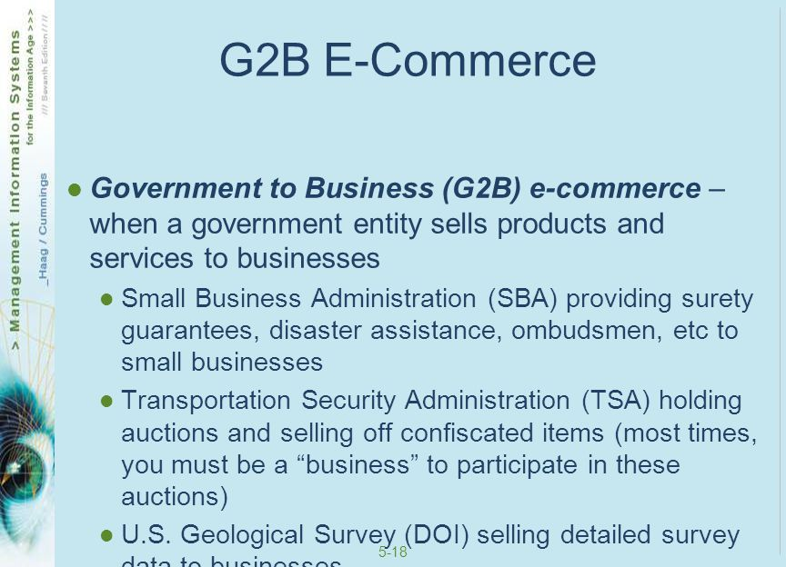 G2B E-Commerce Government to Business (G2B) e-commerce – when a government entity sells products and services to businesses.