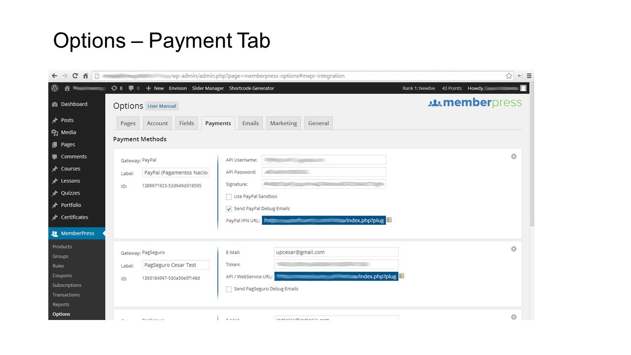 Options – Payment Tab