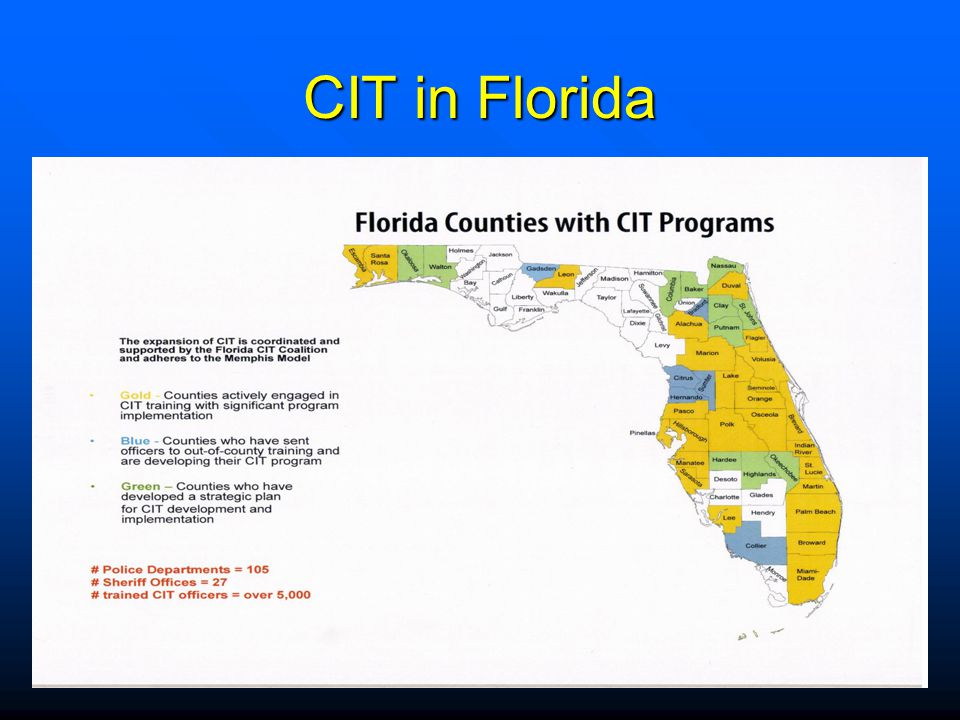 CIT in Florida CIT Mobile Crisis Team (Tampa,FL)