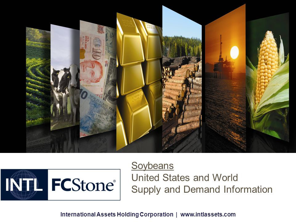 International Assets Holding Corporation | www.intlassets.com