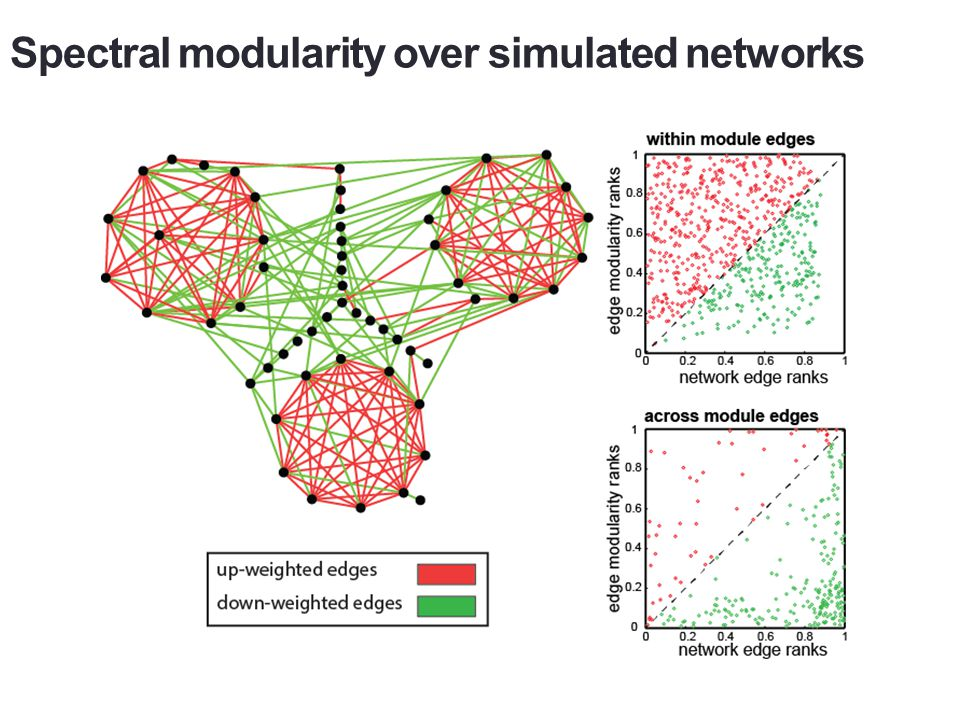 Observed network: combined direct and indirect effects