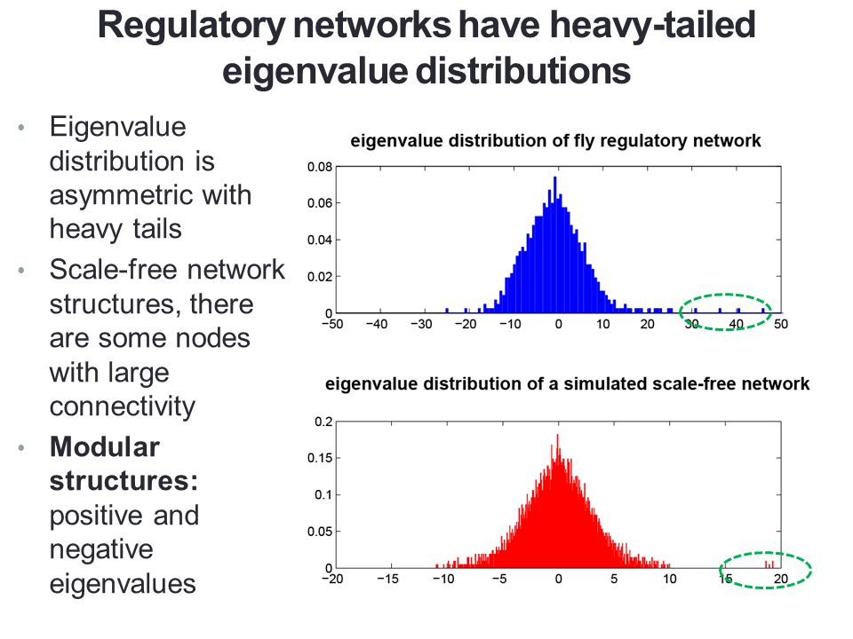 An example of scale-free network structures