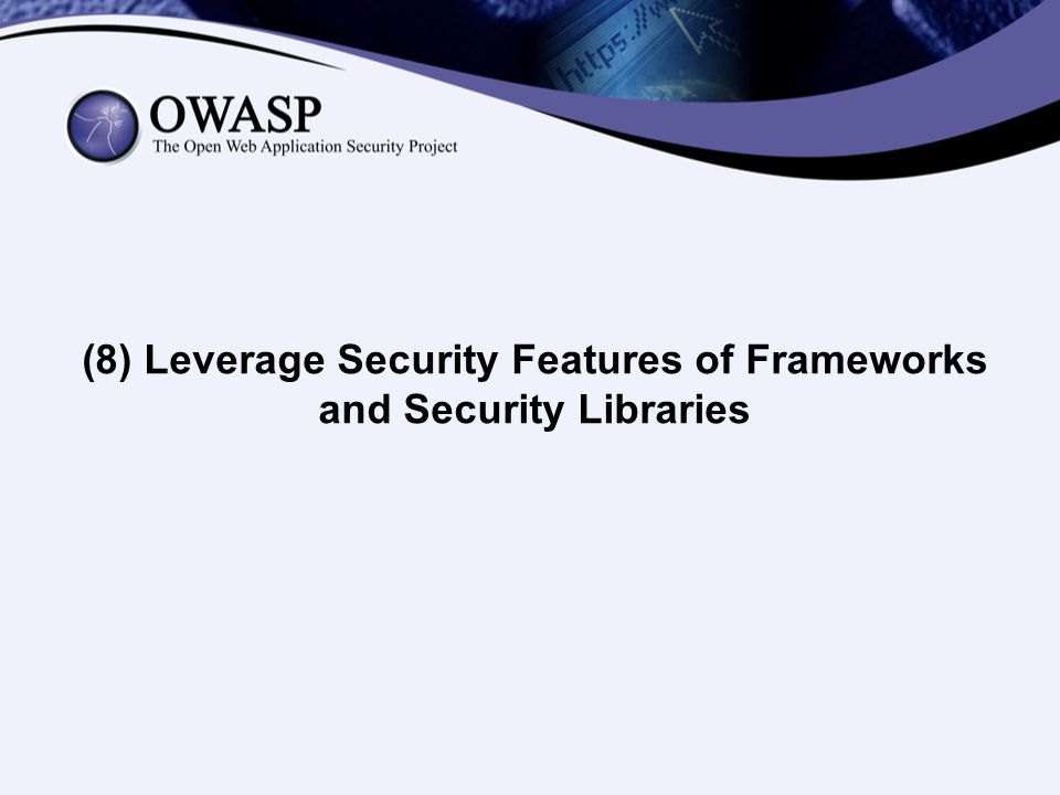 (8) Leverage Security Features of Frameworks and Security Libraries